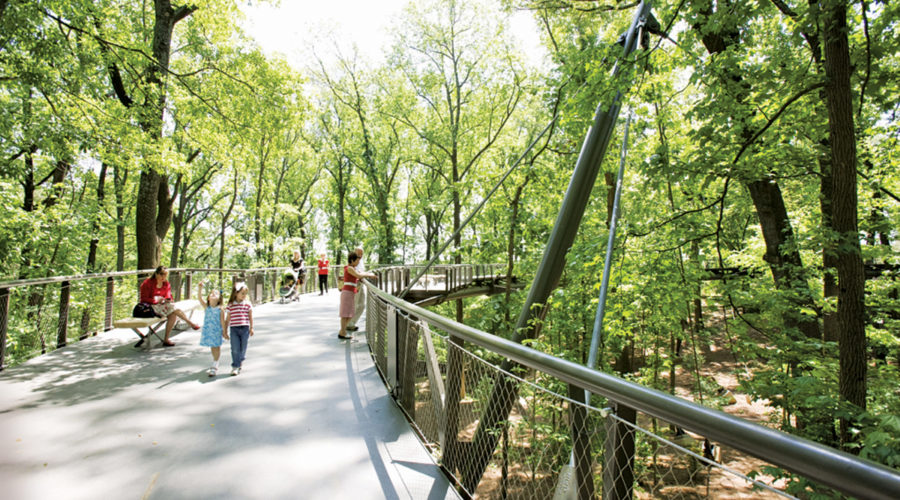 The Best Ways to Enjoy Nature in Atlanta