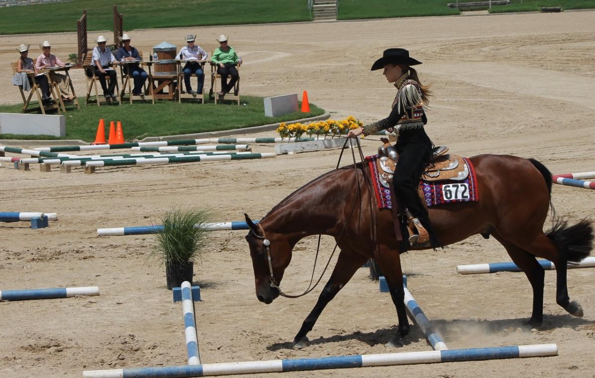 Georgia International Horse Park in Conyers
